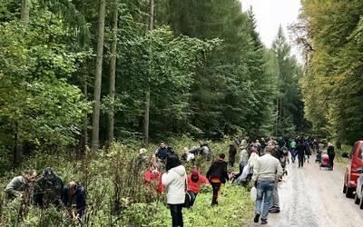 Der Generationen-Wald wächst